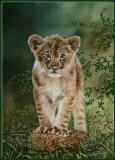 Jong leeuwtje