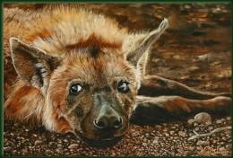 Olieverfschilderijen van Afrikaanse wild door Nico Bulder