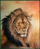Portrai Lion