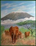 Elephant herd and Kilimanjaro
